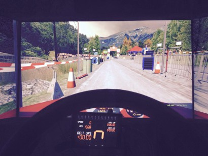 sim racing rally driver